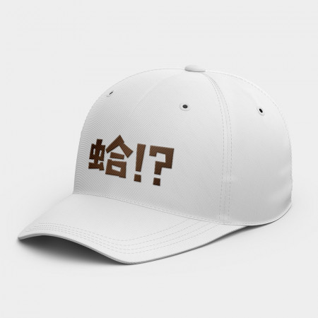 [OTAKU] 大大 韓風鴨舌帽