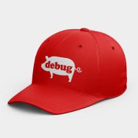 [CTRL+Z] debug   韓風鴨舌帽