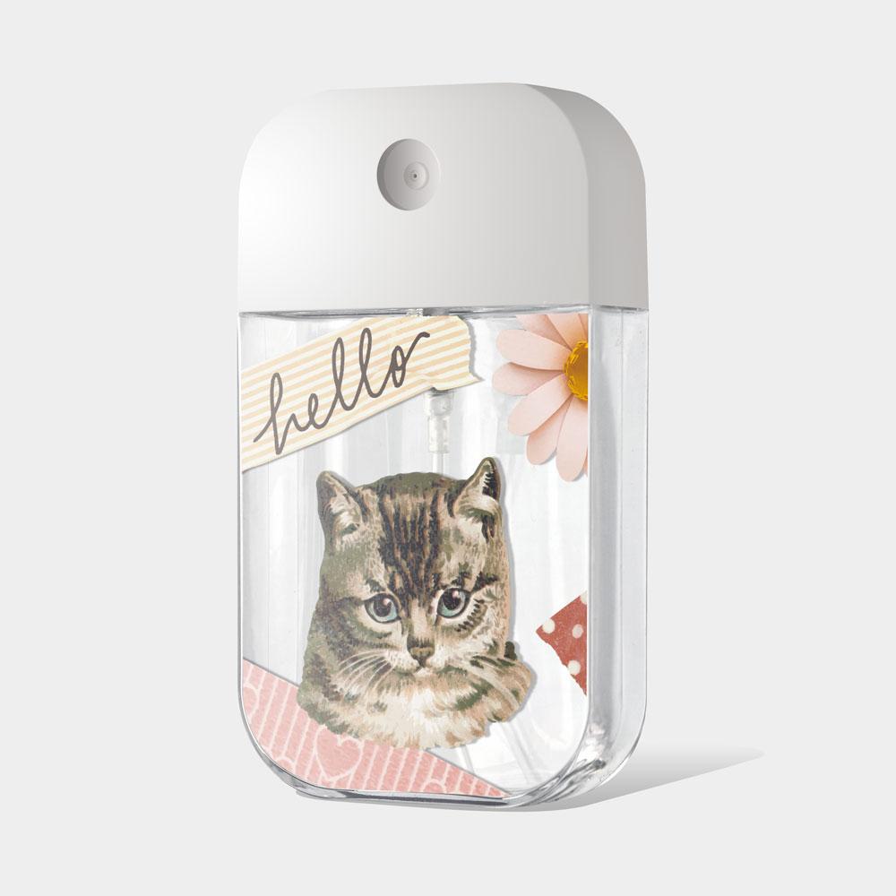 Hello貓咪