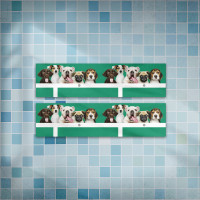 狗狗家族 台灣羽球金牌紀念款